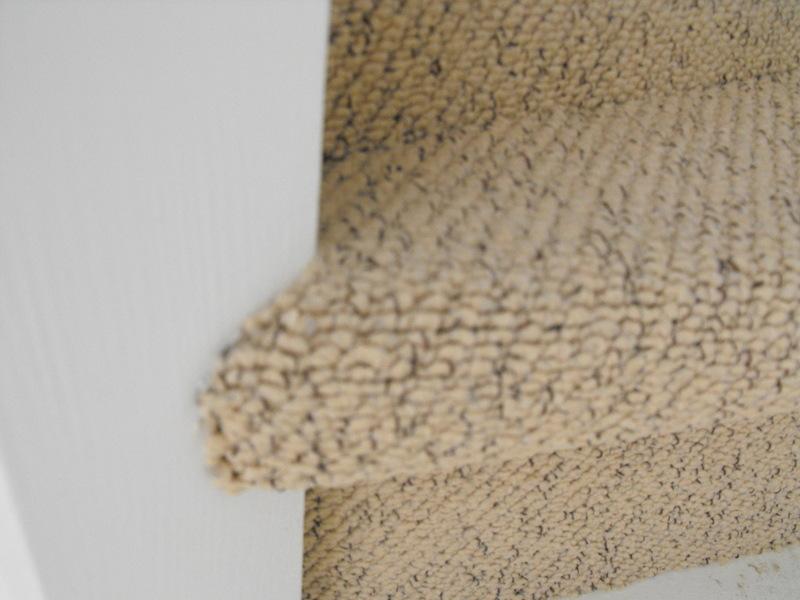 Tapijt Outlet Wierden : Hedendaags tapijt van caster mechelen